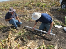 Know your soils workshops